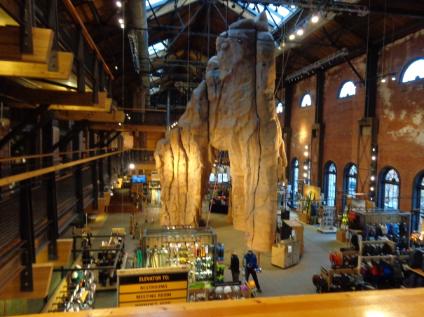 REI Denver rock Pinnacle